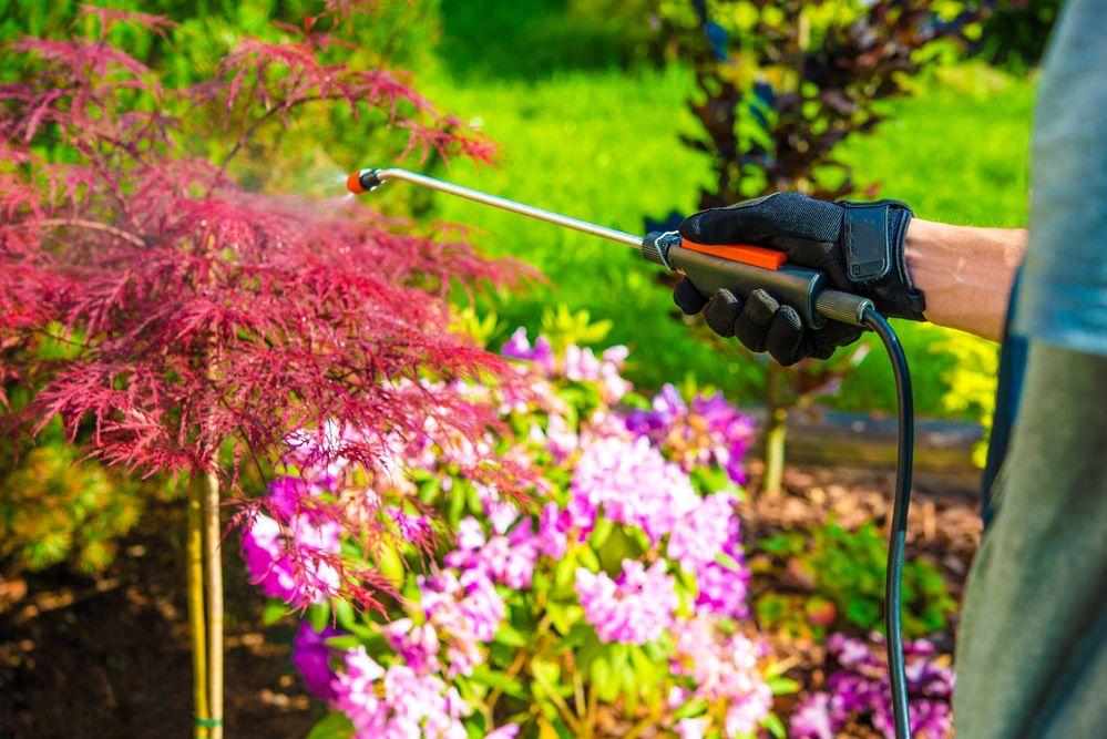 Serviço de Jardinagem: como o equipamento impacta a produtividade?